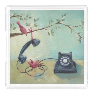 ヴィンテージの電話及び鳥のティール(緑がかった色)の緑のアクリルの皿 トレー
