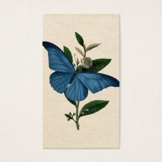 ヴィンテージの青の蝶 名刺
