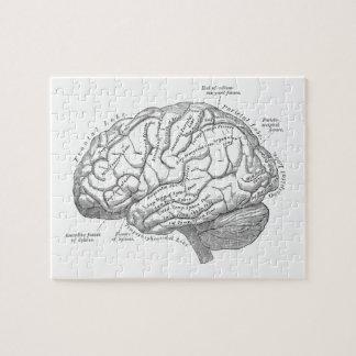 ヴィンテージの頭脳の解剖学 ジグソーパズル