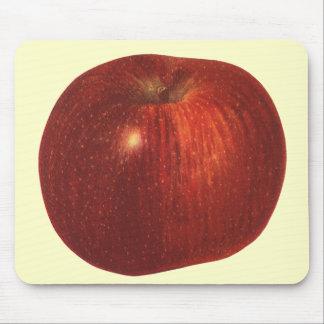ヴィンテージの食糧フルーツ、オーガニックな赤リンゴ マウスパッド