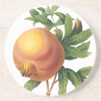 ヴィンテージの食糧フルーツ、Redoute著ザクロ コースター