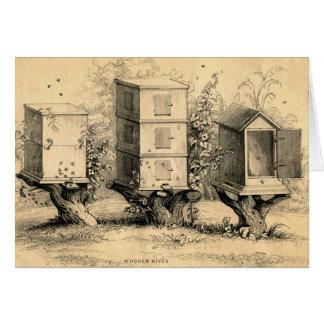 ヴィンテージの養蜂のミツバチの巣のミツバチの巣 カード