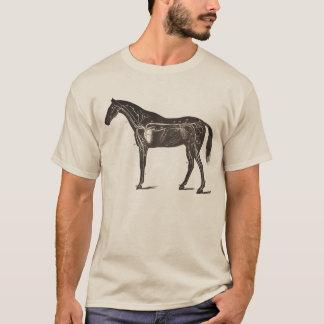 ヴィンテージの馬の解剖学のプリントのTシャツの騎手 Tシャツ