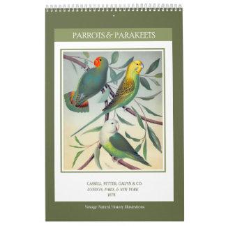 ヴィンテージの鳥-オウムおよびインコ2018年 カレンダー