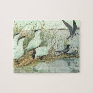 ヴィンテージの鳥、Fuertes著沼地の浜鳥 ジグソーパズル