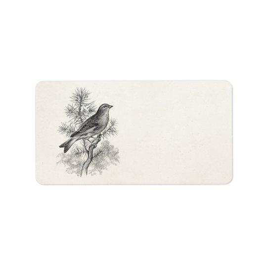 ヴィンテージの19世紀のばら色のLinnetの歌の鳥のフィンチの鳥 宛名ラベル