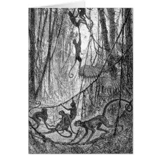 ヴィンテージの19世紀のクモザルのジャングル猿 カード