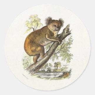 ヴィンテージの19世紀のコアラのイラストレーションはコアラに耐えます ラウンドシール