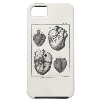 ヴィンテージの19世紀のハートのレトロの心臓解剖学のハート iPhone SE/5/5s ケース