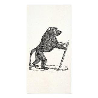 ヴィンテージの19世紀のヒヒの杖猿のヒヒ カード