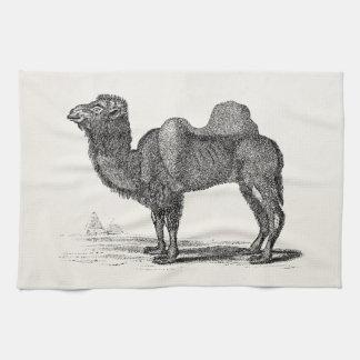 ヴィンテージの19世紀のラクダのイラストレーション-ラクダ キッチンタオル