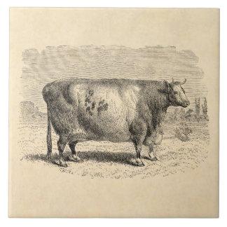 ヴィンテージの19世紀の大きいダラム牛レトロはテンプレートを脅かします タイル