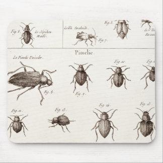 ヴィンテージの19世紀の昆虫の虫のカブトムシのイラストレーション マウスパッド