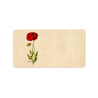 ヴィンテージの19世紀の赤いケシの野生花の花柄のケシ ラベル