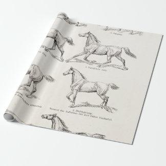 ヴィンテージの19世紀の馬の足取りの絵の馬 ラッピングペーパー
