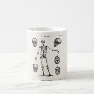 ヴィンテージの19世紀の骨組旧式な解剖学の骨組 コーヒーマグカップ