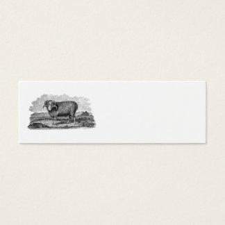 ヴィンテージの19世紀のMerinoヒツジのラムの子ヒツジのテンプレート スキニー名刺