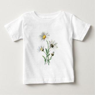 ヴィンテージの1902年のデイジーの古い野生花のイラストレーション ベビーTシャツ