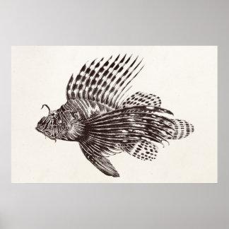 ヴィンテージの1905年のミノカサゴのカサゴのレトロのライオンの魚 ポスター