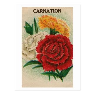 ヴィンテージの《植物》百日草の種の包みの郵便はがき ポストカード