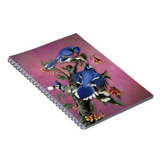 ヴィンテージのBlue Jaysのイラストレーション(Audubon) ノートブック