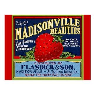 ヴィンテージのMadisonvilleのLAのいちごの木枠の郵便はがき ポストカード
