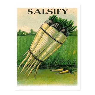 ヴィンテージのsalsifyの種の包みの郵便はがき ポストカード