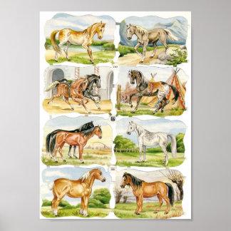 ヴィンテージショーの馬の西部の芸術のプリント ポスター