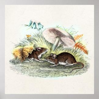 ヴィンテージ分野マウスwは古いレトロのネズミ急速に広まります ポスター