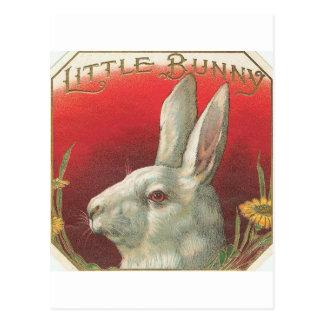 ヴィンテージ少しバニーウサギ ポストカード