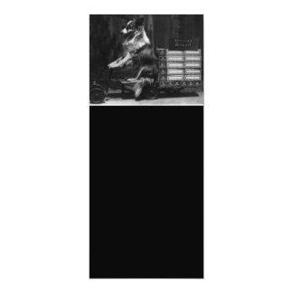 ヴィンテージ熱狂するな犬の乗馬ワゴン写真 カード