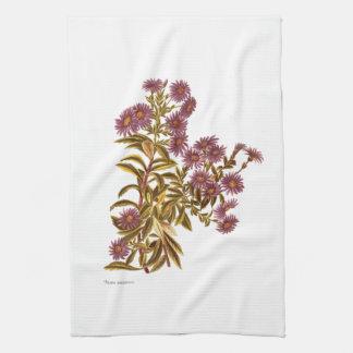 ヴィンテージ科学NZの花- Oleariaのsemidentata キッチンタオル
