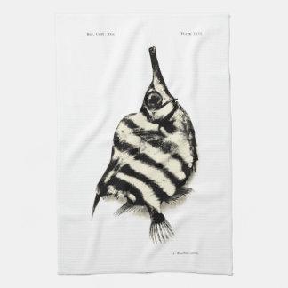 ヴィンテージ科学NZの魚-ふいご魚 キッチンタオル