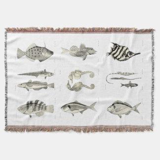 ヴィンテージ科学NZの魚-ブランケット スローブランケット