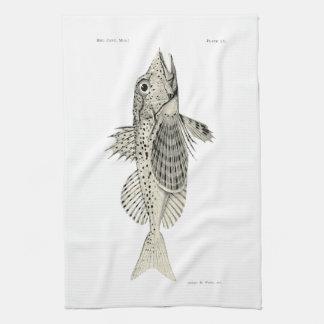 ヴィンテージ科学NZの魚-斑点を付けられたGurnard キッチンタオル