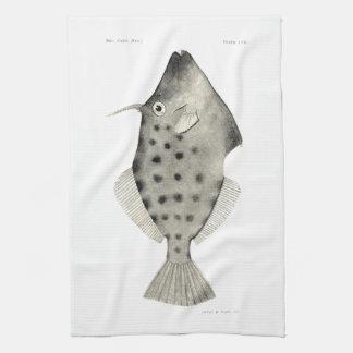 ヴィンテージ科学NZの魚-滑らかなLeatherjacket キッチンタオル