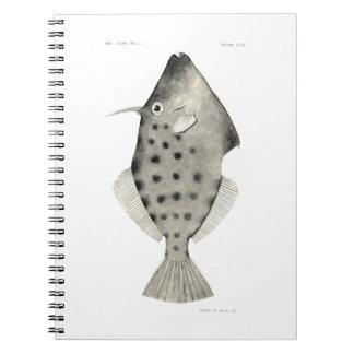 ヴィンテージ科学NZの魚-滑らかなLeatherjacket ノートブック