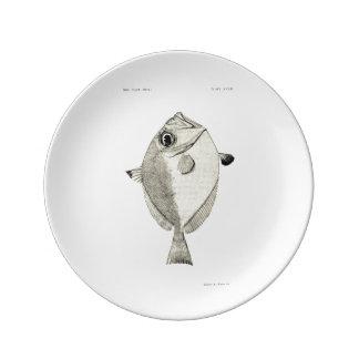 ヴィンテージ科学NZの魚-銀製の小舟 磁器プレート