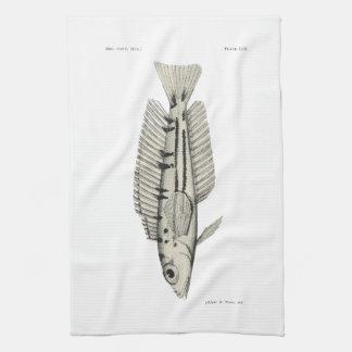 ヴィンテージ科学NZの魚-黄色い織工 キッチンタオル