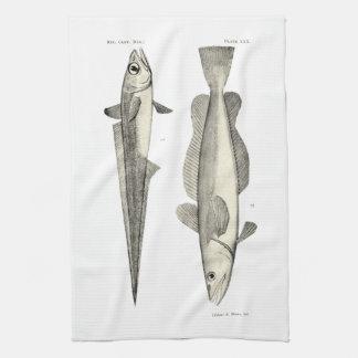 ヴィンテージ科学NZの魚- Hoki キッチンタオル