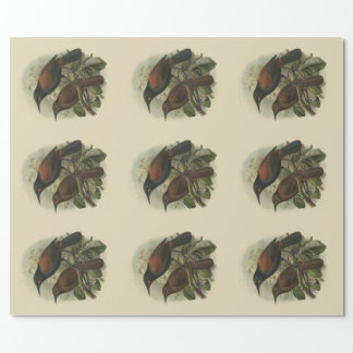ヴィンテージ科学NZの鳥鞍形およびジャック鳥 ラッピングペーパー