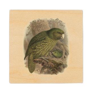 ヴィンテージ科学NZの鳥-フクロウオウムの木のコースター ウッドコースター