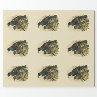 ヴィンテージ科学NZの鳥- Tui ラッピングペーパー