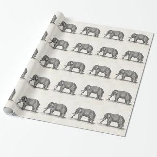 ヴィンテージ象の19世紀のアフリカゾウのテンプレート ラッピングペーパー