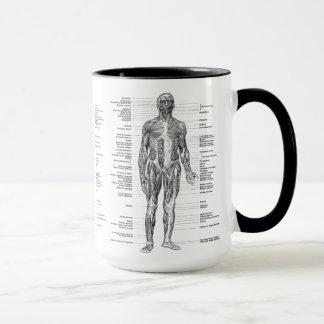 ヴィンテージ-分類された人間の解剖学筋肉 マグカップ