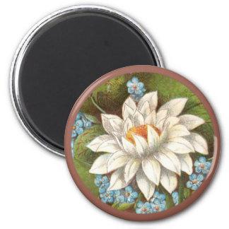 ヴィンテージWaterlilly 磁石
