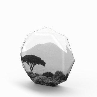 ヴェスヴィオの火山からのイタリアの記念品 表彰盾