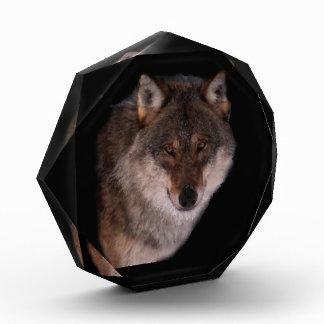 一匹狼賞 表彰盾