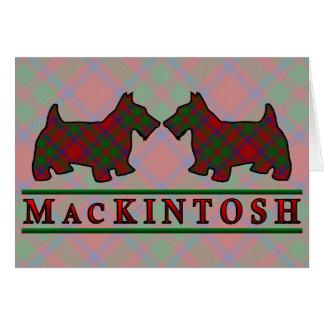 一族のマッキントッシュのタータンチェックのスコッチテリア犬 カード