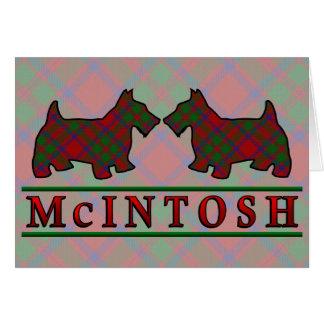 一族のMcIntoshのタータンチェックのスコッチテリア犬 カード